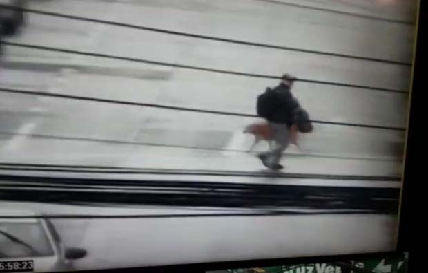[Video] Cámaras de Carabineros ayudan en la detención de sujeto que robó especies desde vehículo