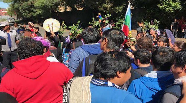 [Video] Revisa aquí la retransmisión en vivo de la marcha de las vendedoras de hortalizas de Temuco