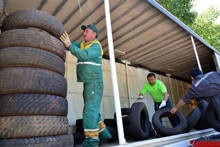 Realizarán nueva campaña de recolección de neumáticos fuera de uso