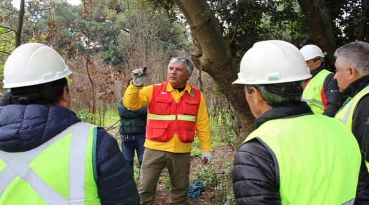 Conaf y Corma se capacitan en investigación de incendios forestales