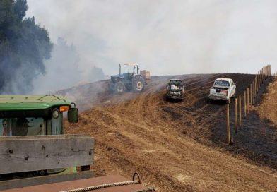 Diputado Rathgeb solicita más brigadistas por incendios y participación de parlamentarios en los comités de emergencias
