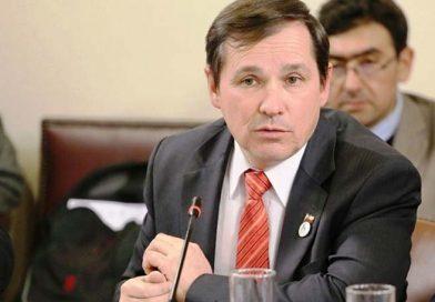 Diputado Rathgeb ofició a servicios pertinentes dar cuenta sobre situación de las araucarias