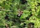 La Araucanía: Fuera de riesgo vital continúa internado deportista que cayó haciendo canopy
