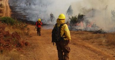 Con alerta amarilla por incendios forestales y posibles tormentas eléctricas se encuentra La Araucanía