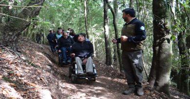 """Personas con discapacidad visual y física podrán disfrutar del sendero inclusivo """"Los Copihues"""""""