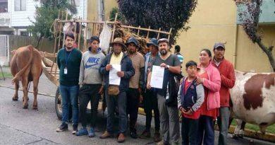 A paso firme avanza proceso que busca reconocer a los Cochayuyeros como Patrimonio Cultural Inmaterial de la Humanidad