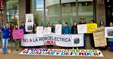 Vecinos de Huife alto protestaron contra aprobación de hidroeléctrica