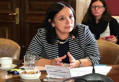 Senadora Aravena, Emplaza a Fiscal Nacional Jorge Abbot a que cambie de estrategia y visite La Araucanía