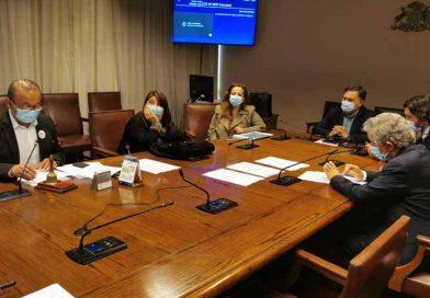 Diputado Celis es elegido presidente de comisión investigadora por posibles irregularidades en La Araucanía